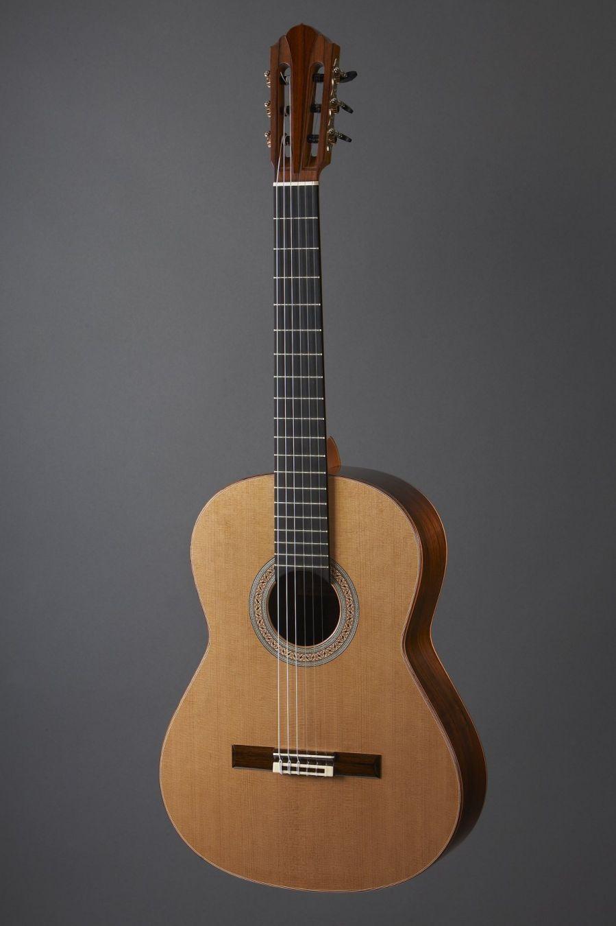 Guitare présentée au SGM 2008